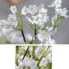 Baby S Breath Flower Amazon Com Bringsine Baby Breath Gypsophila Wedding Decoration