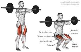 barbell front squat exercise instructions and video weight