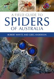 a field guide to spiders of australia robert whyte greg anderson