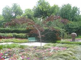 Dallas Arboretum Map by Usa Travel Going To America