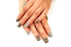 nail artist salon nova