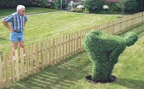 Wacky Garden Ideas Totally Wacky And Unique Garden Shrubs Bushes And Hedges Bad