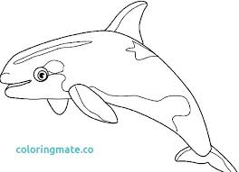 coloring page killer whale killer whale coloring pages whale coloring pages killer page 6 s