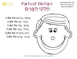 Hebrew Worksheets Hebrew עברית Kefar Publishing