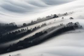 foggy valley image california national geographic your shot