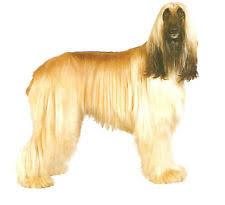 afghan hound fabric hound dog fabric ebay