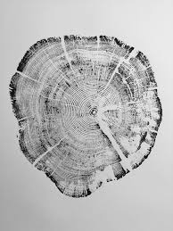 tree rings art images West glacier national park tree ring print 39 graphic art patterns jpg