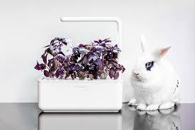 click u0026 grow smart garden planter 3 30 x 10 x 28 cm white amazon