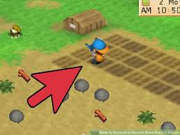 harvest moon how to succeed in harvest moon back to nature with pictures