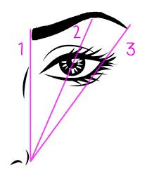 How To Shape Eyebrow How To Shape Your Eyebrows Diagram U2013 World Novelties Makeup 2017