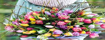 wedding flowers belfast wedding flowers cost belfast wedding flowers in belfast by blooms