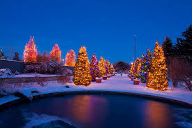 The Best Christmas Light Displays by Of The Best Colorado Christmas Light Displays Idolza