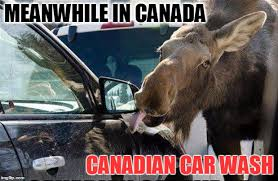 Meanwhile Meme - while you re making memes about cnn another canadian car was