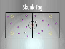 p e games skunk tag i would have no safe zone and i have to