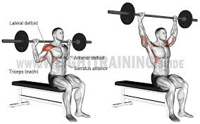 push archives page 2 of 10 weight training guide