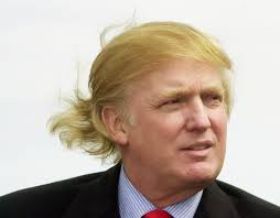 Hairstyles For Guys Growing Their Hair Out by Donald Trump Really Doesn U0027t Want Me To Tell You This But