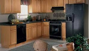 kitchen design pictures best color to paint kitchen cabinets for