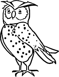 nocturnal animals coloring pages wecoloringpage
