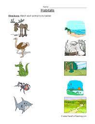 animal worksheets have fun teaching