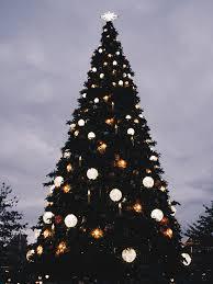 christmas at disneyland paris julia beaumont