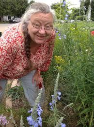 native plant network join us u2013 southern illinois schools u0027 native gardens network