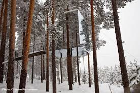 tree hotel sweden treehotel swedish lapland picture of norrbotten county sweden