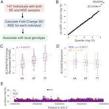 local adaptation of sun exposure dependent gene expression