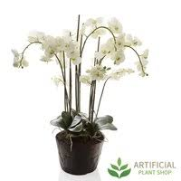 Fake Plants Australia U0027s Most Lifelike Plants Artificial Plant Shop