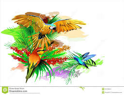 Exotic Colors by Tropical Birds Vector Stock Illustration Image 46774392