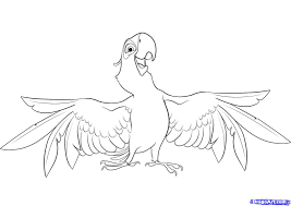 coloring blue macaw coloring pages