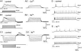 define wiring diagram simple wiring diagrams u2022 edmiracle co