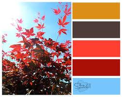 color combos natures color combos stitch11