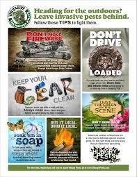 usda native plants protect nature from invasive u0027hungry pests u0027 with usda u0027s six tips