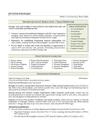 Trade Resume Examples by Sales Account Executive Resume Example