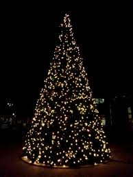 How To Decorate Outdoor Trees With Lights - christmas christmas lighted tree fabulous photo ideas modest