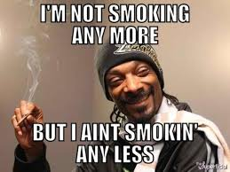 Smoking Weed Memes - snoop dogg on cannabis weed humor and meme