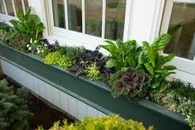 easily manage year round planter boxes hgtv dreams happen