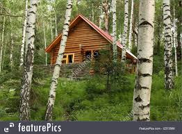 residential architecture the wooden house in a forest stock