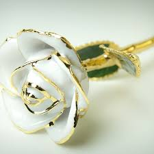 Gold Dipped Roses White Rose U2013 Golden Luxury Hq