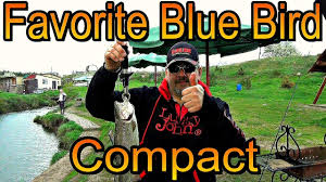 обзор после теста favorite blue bird compact bbc 634ul ts