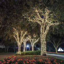 outdoor string lights solar ora 100 led solar powered outdoor string lights bright white 55