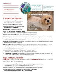 training and resources for animal disaster rescuers kinship circle