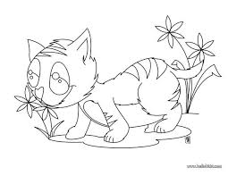 kitten eating flowers coloring pages hellokids com