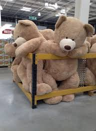 Bear On The Chair Best 25 Big Teddy Bear Ideas On Pinterest Big Teddy Giant