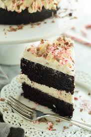 double chocolate peppermint cake the recipe critic