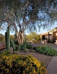 Front Yard Desert Landscape Mediterranean Exterior African Patio And Garden Southwestern Landscape Phoenix By