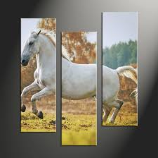 Horse Home Decor by 5 Piece Wildlife White Horse Large Canvas