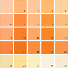 orange paint benjamin moore paint colors orange palette 11 house paint colors