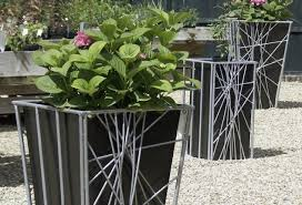 pleasurable art plant delivery popular plants for office under