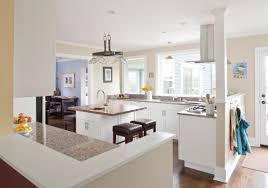 kitchen remodel ideas budget best kitchen remodel ideas on a dime nm3km8 5200